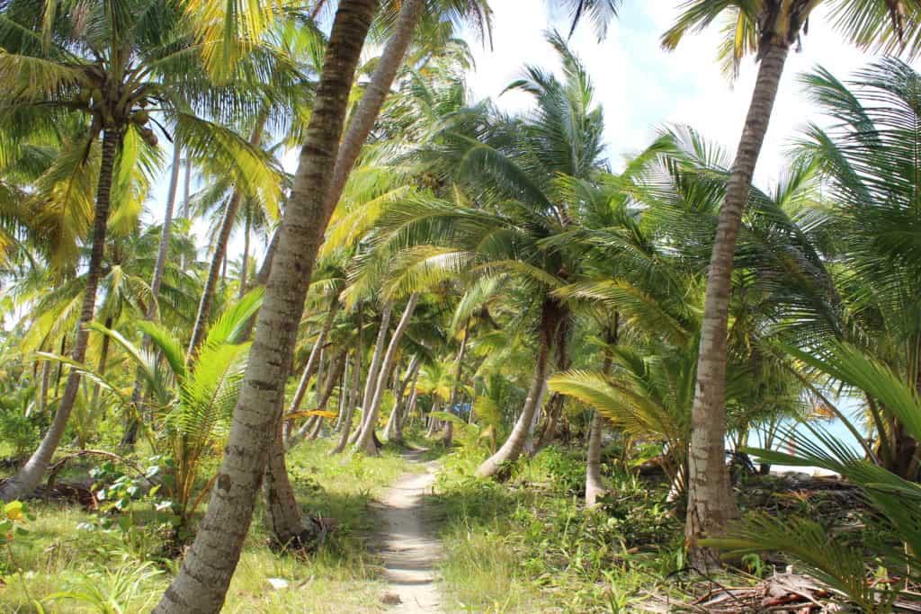 Voyager au San Blas