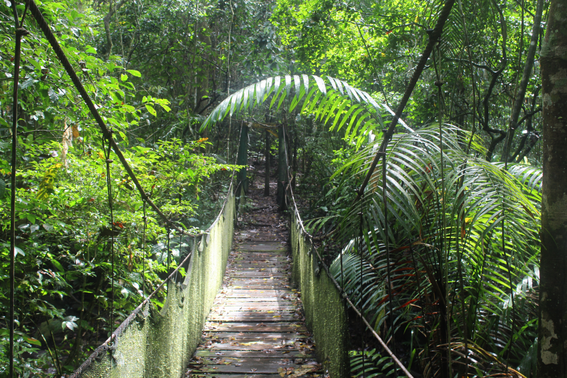 Visiter Le Panama