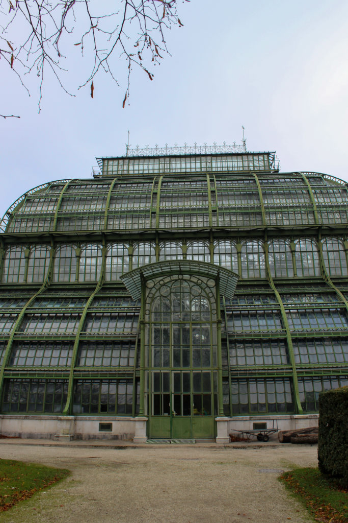 Serre du palais de schönbrunn