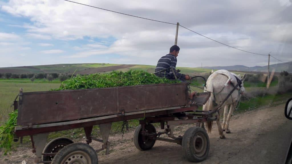 Sur la route du Maroc