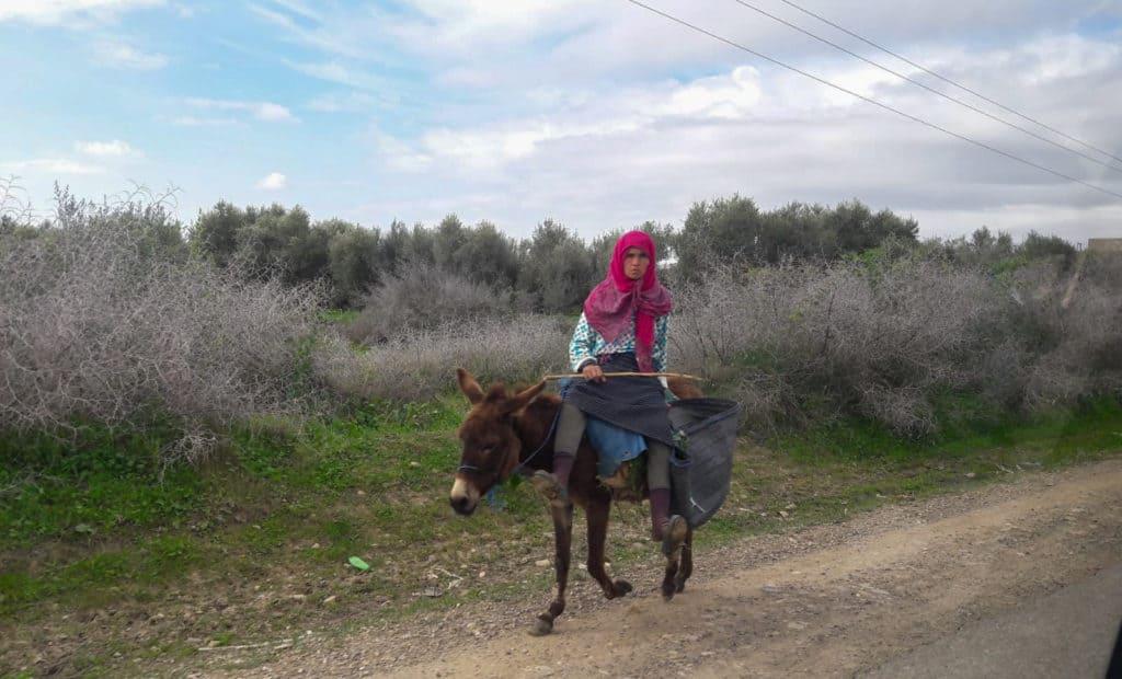 Sur la toute du Maroc