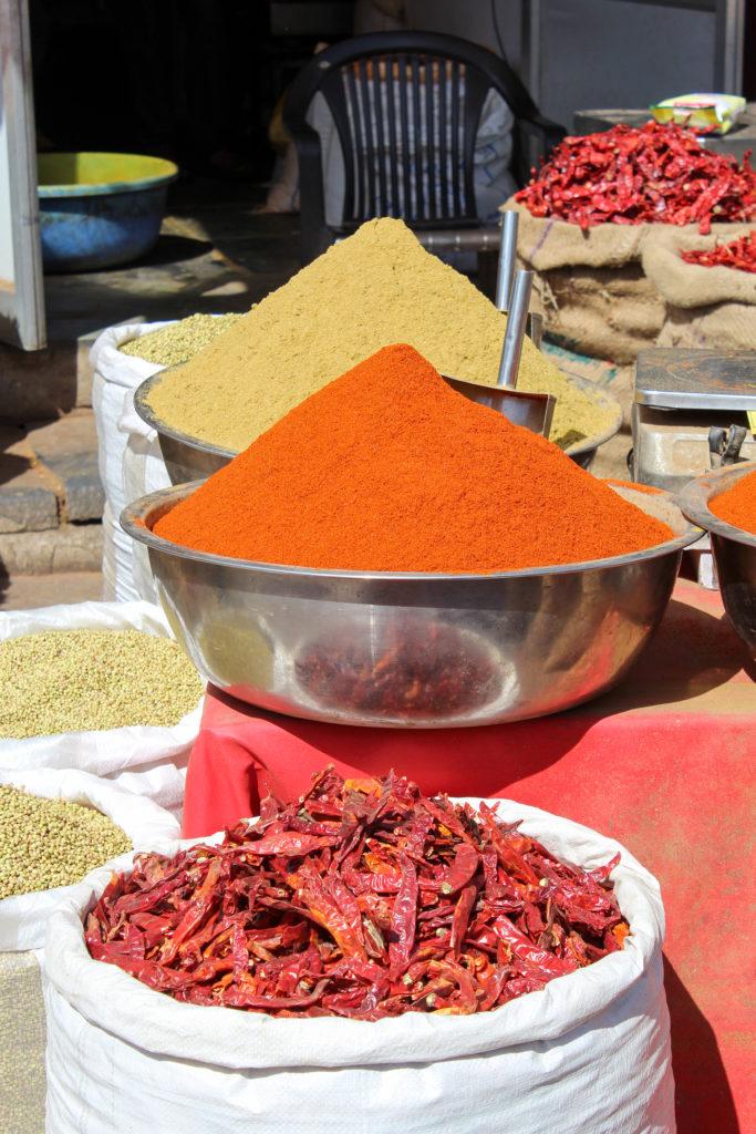 Udaipur voyage au Rajasthan