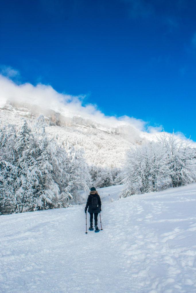 raquettes chartreuse Savoie