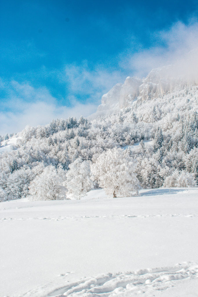 Rando raquettes chartreuse Savoie