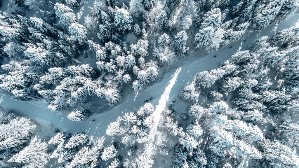 Raquette Savoie massif des bauges
